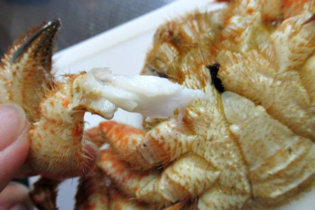 クリガニ 栗毛ガニ 付け根のカニ肉